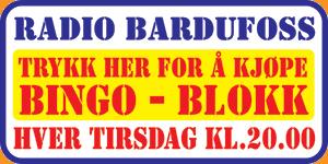 Bingoknapp Bardufoss